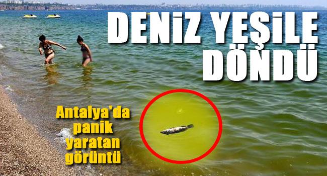 Antalyada korkutan görüntü