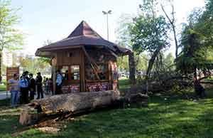 İstanbulda piknik faciası