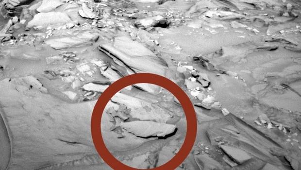 Gözlerinize inanamayacaksınız..Marsta balık bulundu